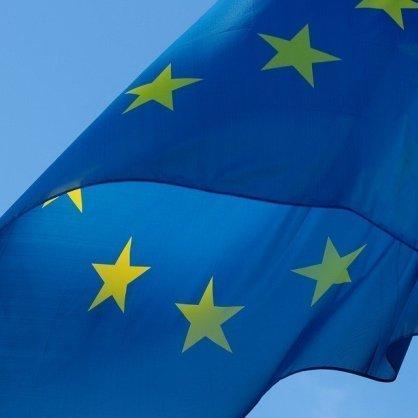 bandiera europa con sagola